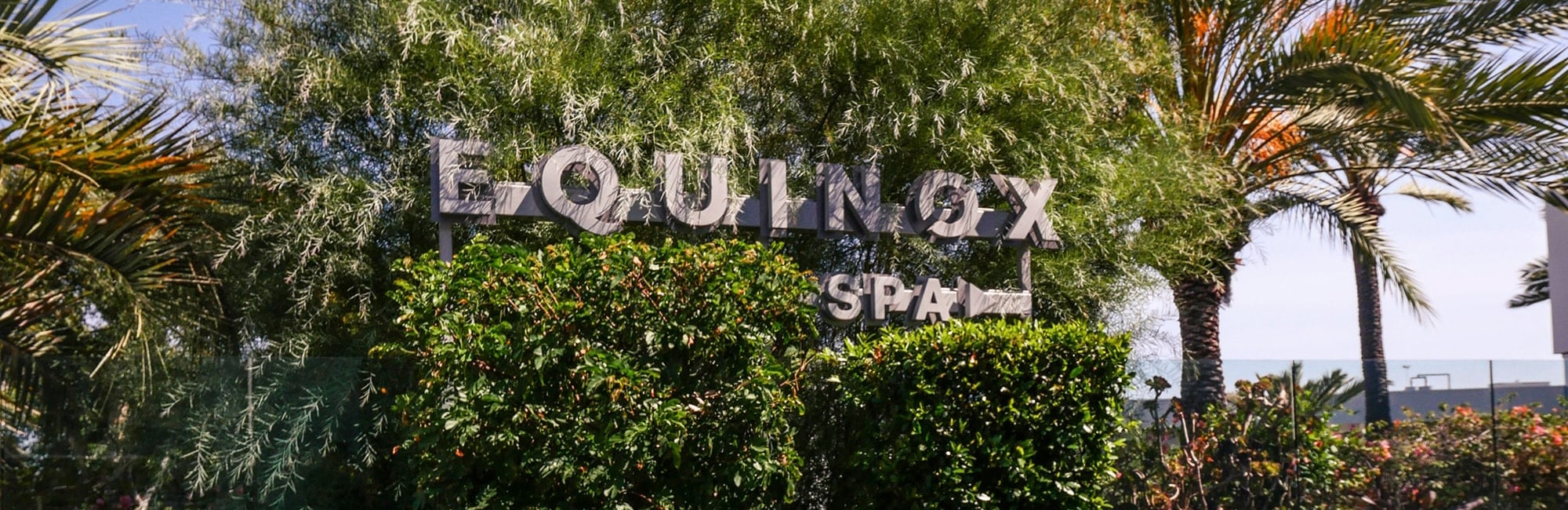 Equinox Spa Sign in Tree