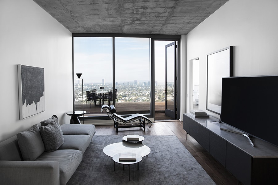 Penthouse Living Room and Outdoor Terrace